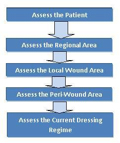 Wound Care Patient Assessment Pathway